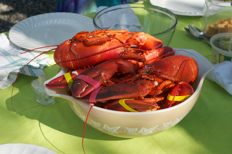 pot of Maine lobsters on July 4th