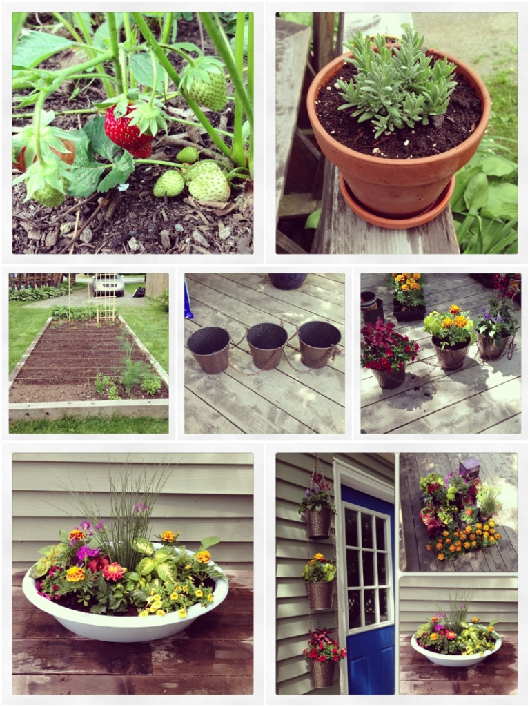 a maine wedding photographers day off spent gardening