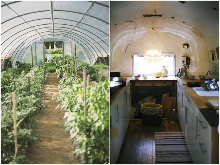 pepper greenhouse and renovated airstream