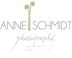 Houston, Texas Wedding and Portrait Photographer | Anne Schmidt Photography logo